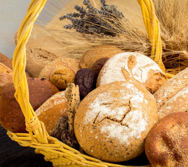 Variedad de productos y cereales ecológicos